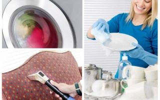 बग से विच्छेदन के बाद सफाई