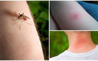 मच्छर काटने और एक बग या टिक काटने के बीच क्या अंतर है?