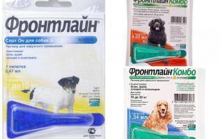 कुत्तों के लिए fleas से फ्रंटलाइन ड्रॉप