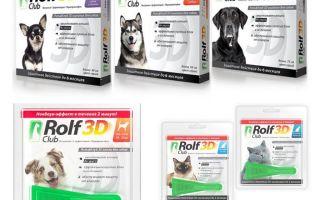 कुत्तों और बिल्लियों के लिए fleas से रोल्फ क्लब 3 डी ड्रॉप