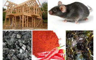चूहों के खिलाफ फ्रेम हाउस की सुरक्षा