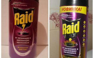 बिस्तर RAID उपाय