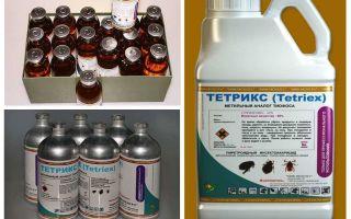 Bedbugs के लिए Tetrix उपाय