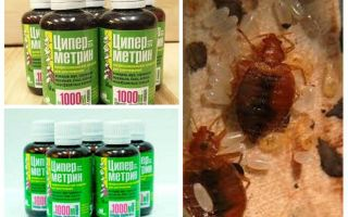 Bedbugs से Cypermethrin