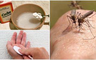 बच्चों और वयस्कों के लिए मच्छर काटने सोडा समाधान