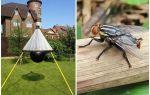 Gadflies और gadflies के लिए घर का बना जाल
