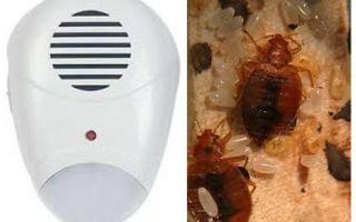 बेडबग से रिपेलर कीट रिपेलर