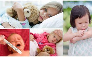 वयस्कों और बच्चों में मच्छर काटने का तापमान