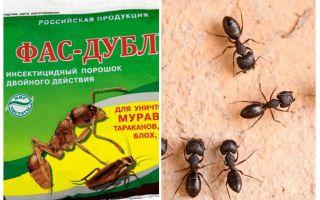 चींटियों से फास-डबल मतलब है