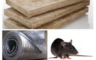 किस तरह का इन्सुलेशन चूहों और चूहों को नहीं खाते हैं