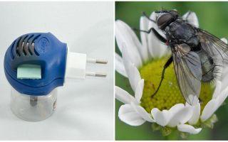 आउटलेट में मक्खियों और मच्छरों से फ्यूमिगेटर