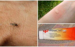 एक बच्चे और वयस्क में मच्छर के काटने से खुजली को कैसे और कैसे हटाया जाए