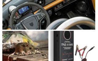 कार पुनर्विक्रेता चूहों और चूहों
