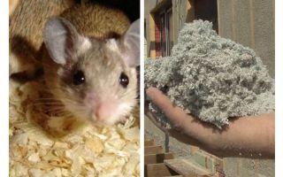 किस तरह का इन्सुलेशन चूहों को नहीं खाते हैं