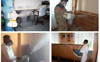 बेडबग के लिए गर्म धुंध उपचार