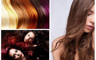रंगे बालों पर जूँ हो सकते हैं