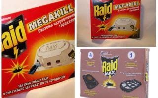 कॉकरोच RAID: जाल, स्प्रे, एयरोसोल