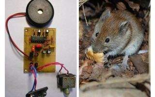 अल्ट्रासोनिक पुनर्विक्रेता चूहे और चूहों अपने हाथों से
