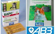बिल्लियों और कुत्तों से बिल्लियों और कुत्तों के लिए तेंदुए को छोड़ देता है