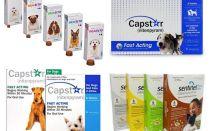 कुत्तों के लिए fleas और ticks के लिए गोलियाँ