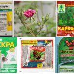 पौध संरक्षण के लिए जहरीले रसायनों