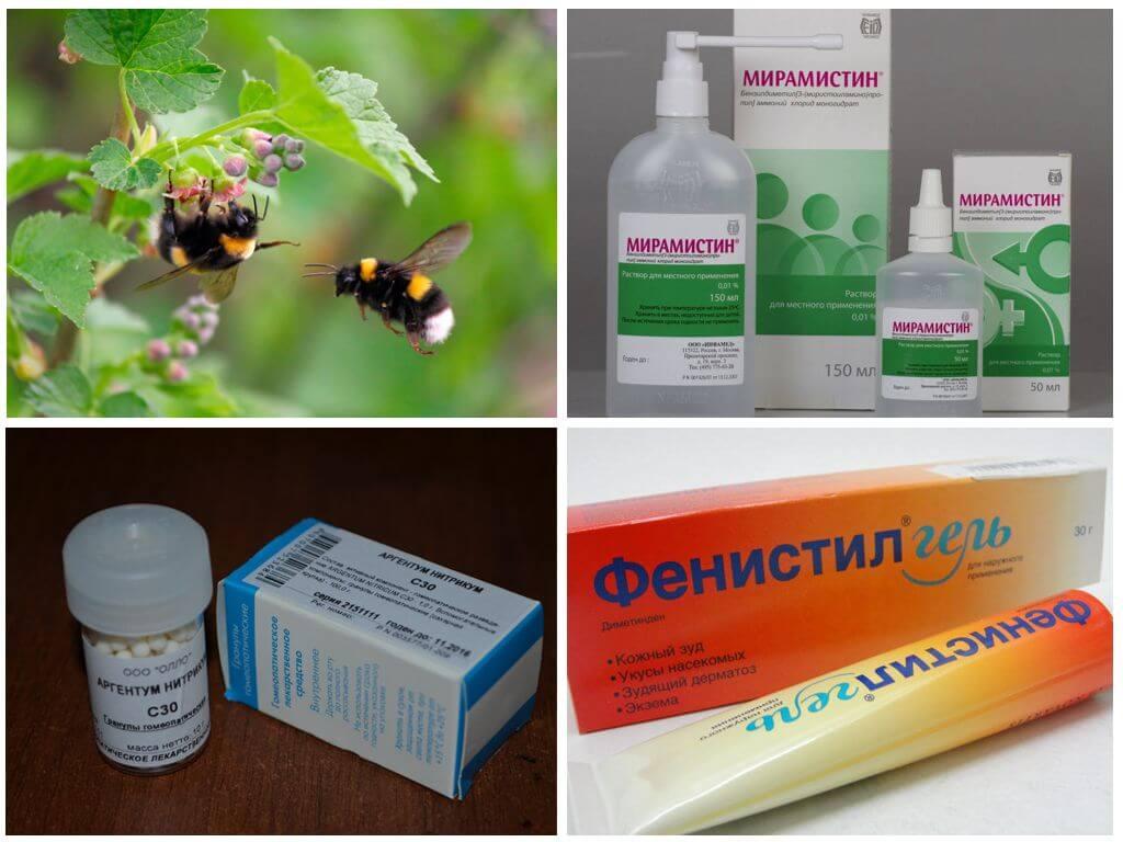 कीट काटने का उपचार