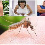 मलेरिया मच्छर काटने के नतीजे